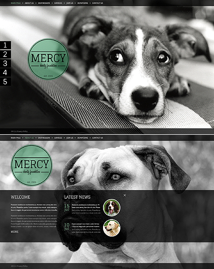 Website Template #39568