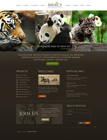 Website Template #39619