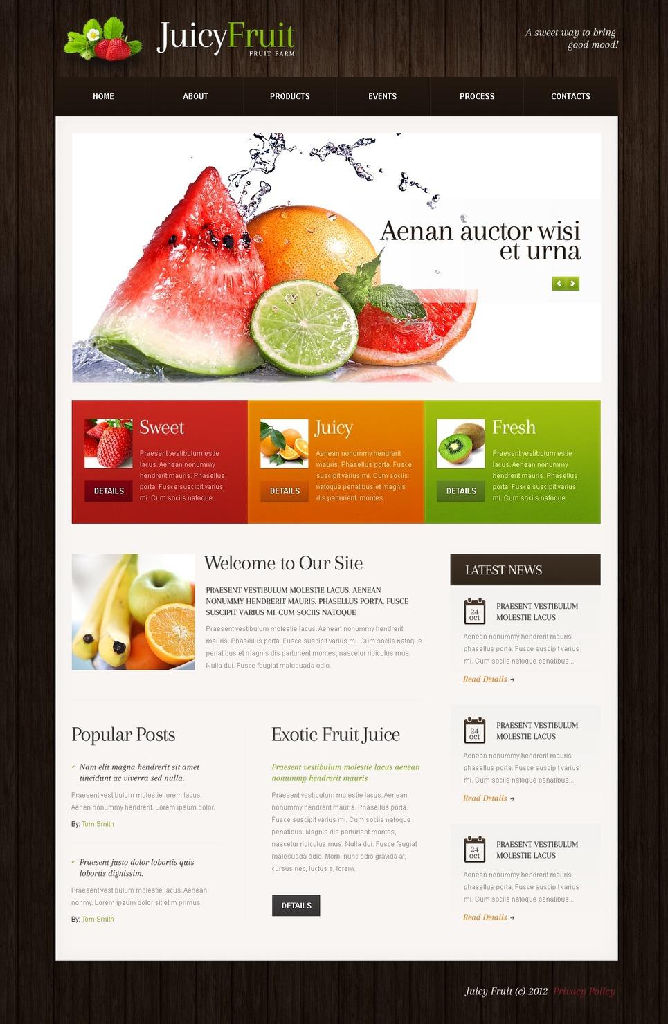 Fruit WordPress Theme New Screenshots BIG