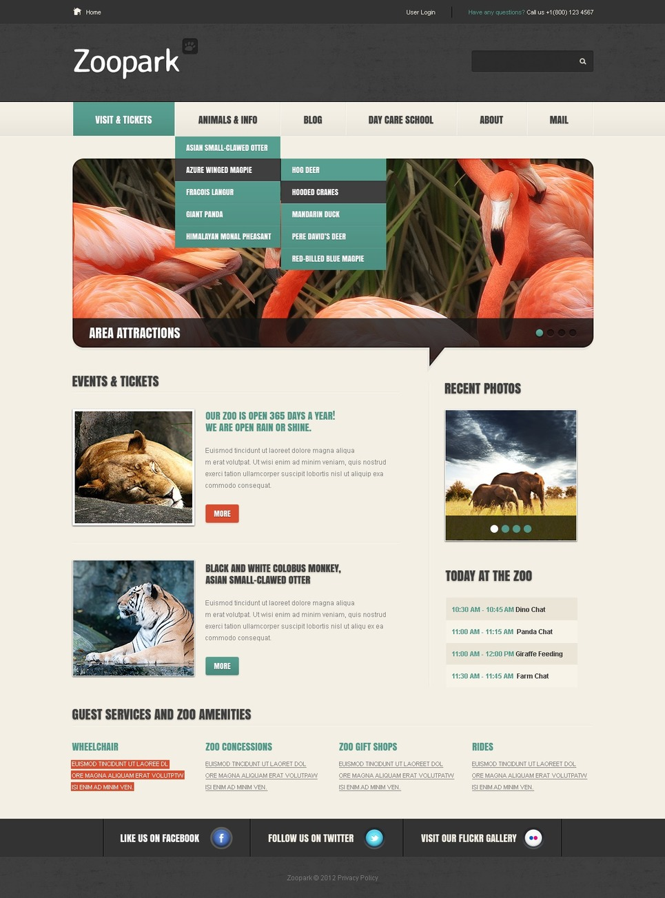 Zoo WordPress Theme New Screenshots BIG