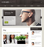 WordPress theme #39820 by Elza
