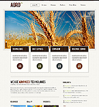Template #39866 