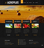 Template #39960 