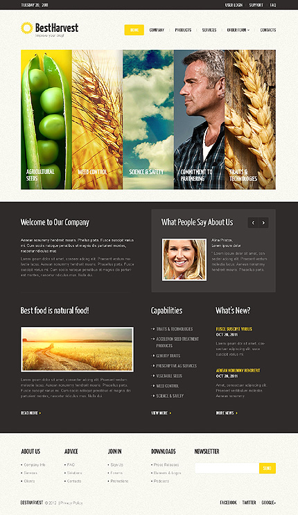 Website Template #40229