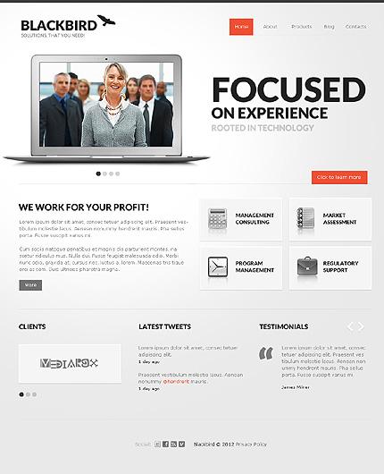 View Live Demo for Black bird – WordPress Responsive Theme focused on mobile Corporate Websites