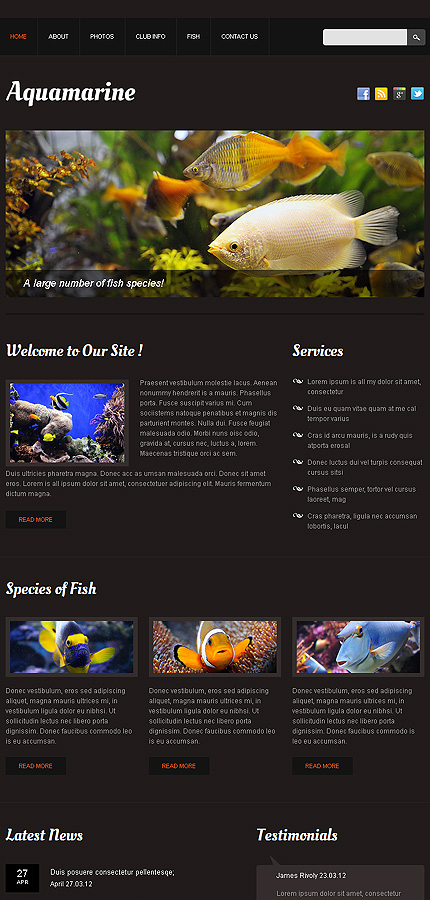 fish responsive website template web design templates website templates download fish. Black Bedroom Furniture Sets. Home Design Ideas