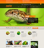 Website template #40510 by Oldman