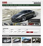 Stretched Flash CMS Theme #40636