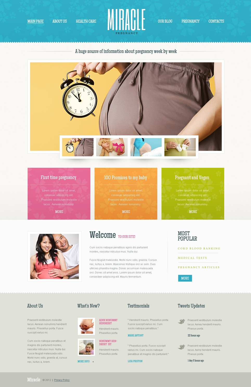 Pregnancy WordPress Theme New Screenshots BIG