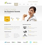 Stretched Flash CMS Theme #41386