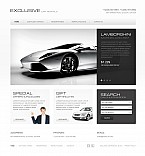 Stretched Flash CMS Theme #41399