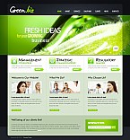 Stretched Flash CMS Theme #41536