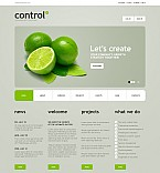 Stretched Flash CMS Theme #42331