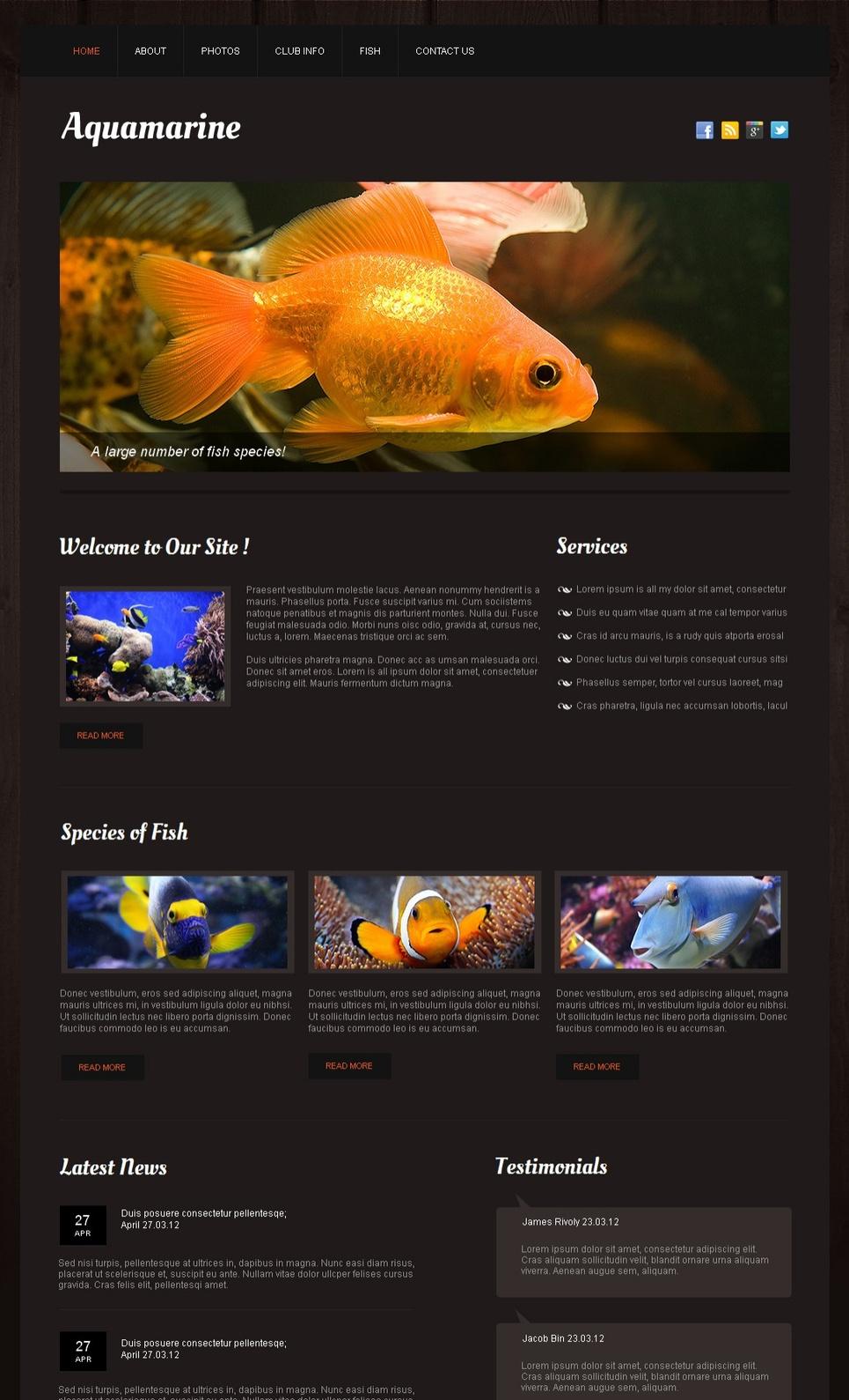 Aquarium Fish Website Template with Photo Gallery - image