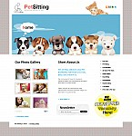 Stretched Flash CMS Theme #42908