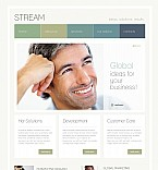 Stretched Flash CMS Theme #42915