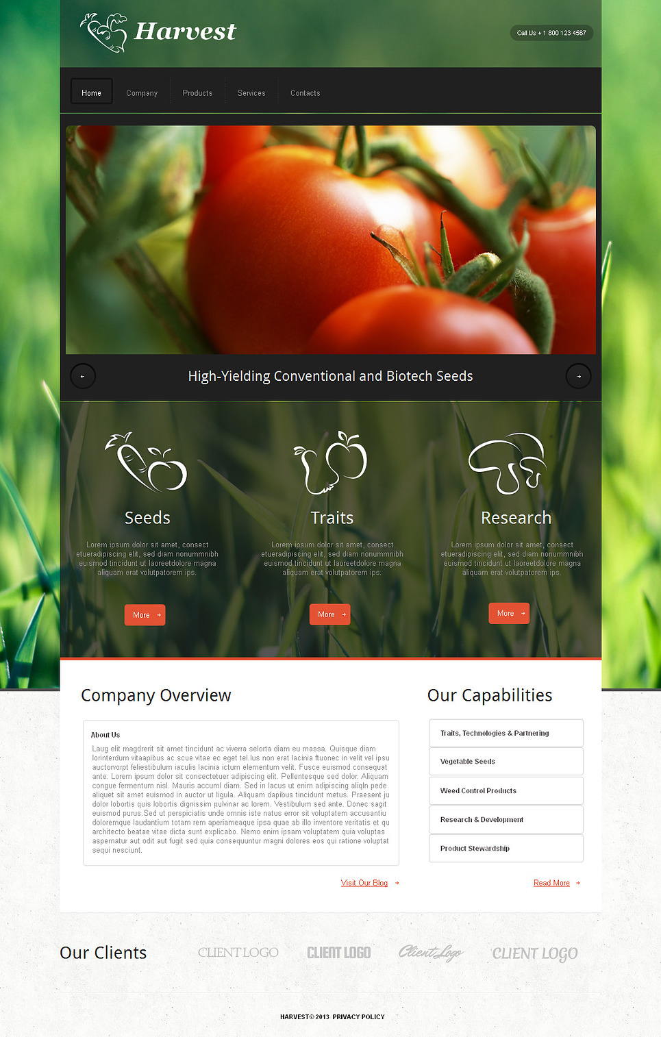 Agriculture Web Template with Grassy Background - image