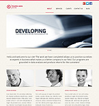 WordPress theme #43180 by Cerberus