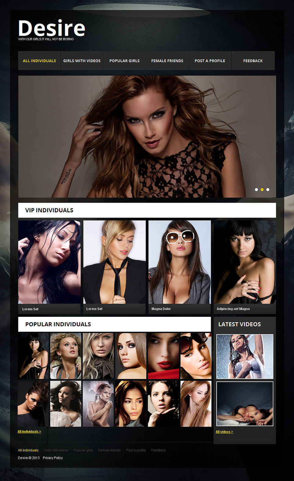Adult MotoCMS HTML Template #43233 - image