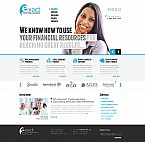Stretched Flash CMS Theme #43356