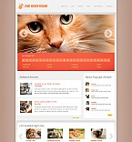Stretched Flash CMS Theme #43747
