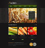 Template #43766 