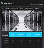 Template #43945 