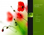 Stretched Flash CMS Theme #44435