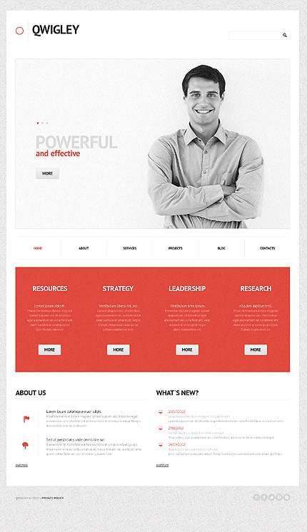 Demo Preview for Business Analytics - for Responsive WordPress Corporate Websites