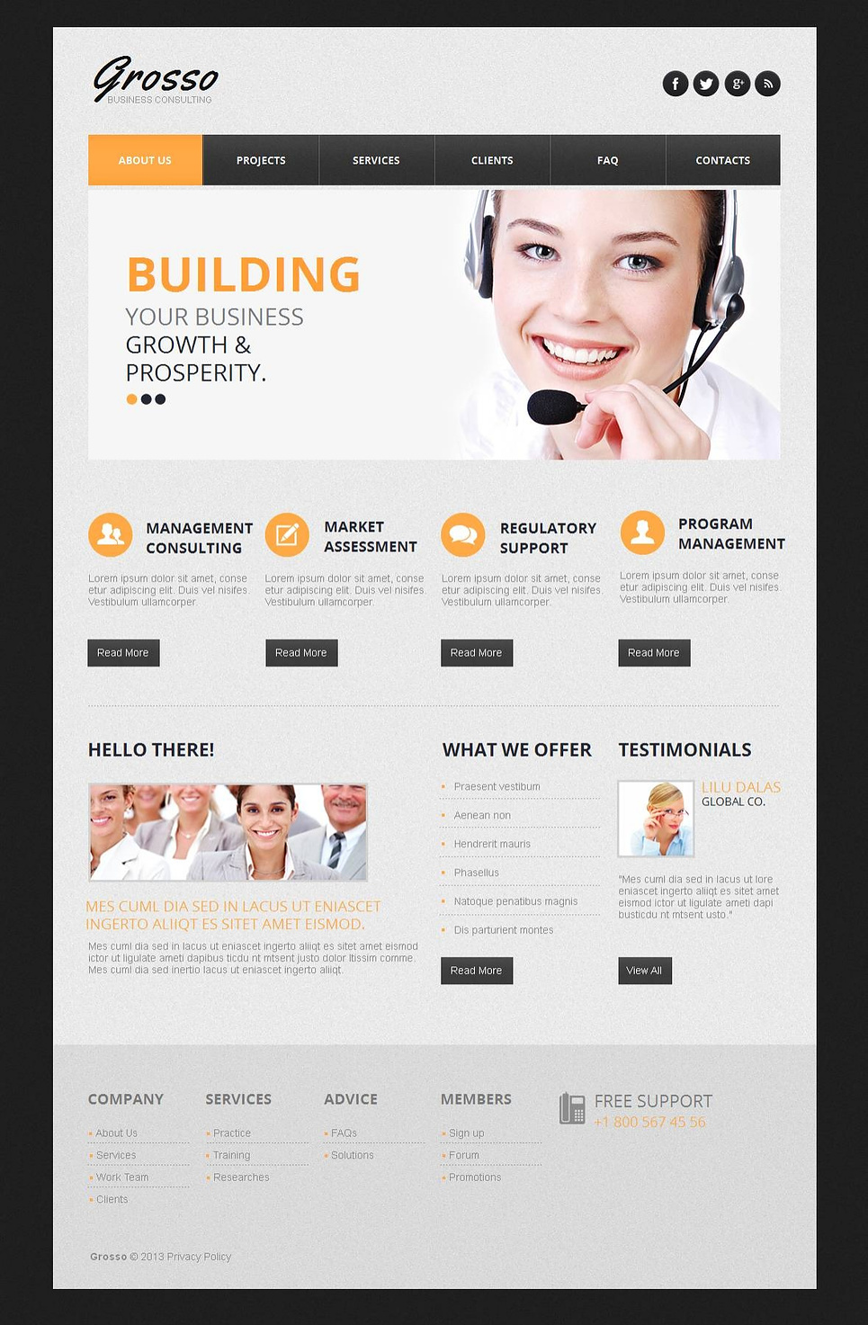 Business Consulting Website Template with CMS - image