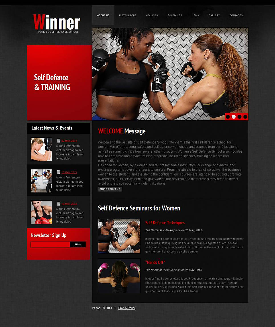 Self-Defense School Web Template with jQuery Slider - image
