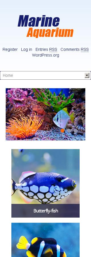 Marine Aquarium Wordpress Theme Web Design Templates