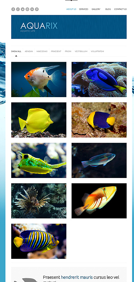 Aquarix - Astonishing Responsive WordPress Aquarium Theme
