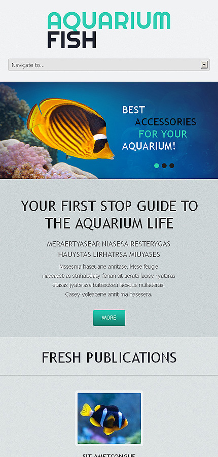 Aquarium fish - Marvellous Responsive WordPress Aquarium Theme