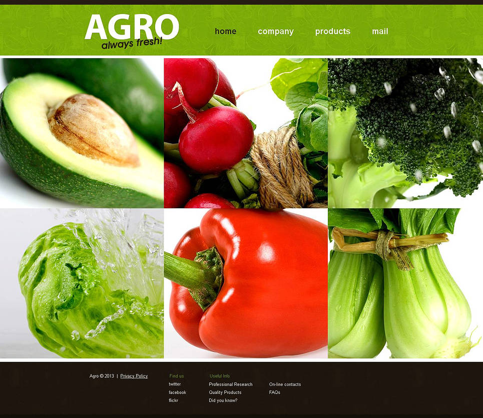 Vegetable Farm Website Template with Sliding Photo Gallery - image