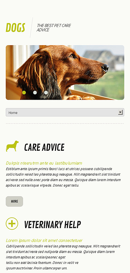 Dogs - Splendid Responsive Dogs WordPress Theme
