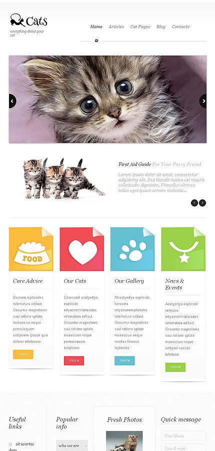 Cats - Best Responsive Pet Clinic WordPress Theme
