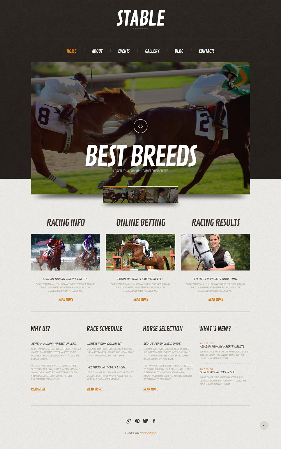 Horse Responsive Wordpress Theme Web Design Templates