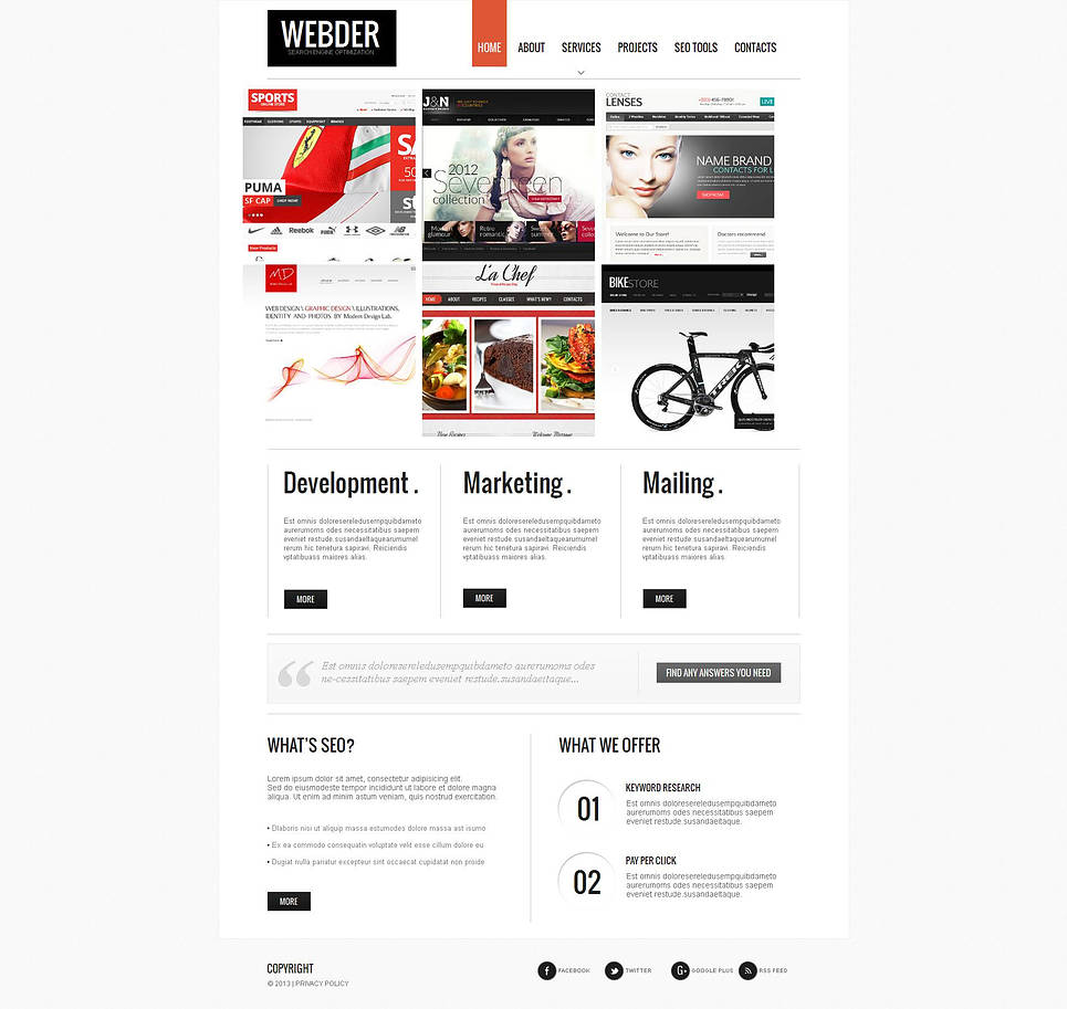Business Website Template for Search Engine Optimization Companies - image