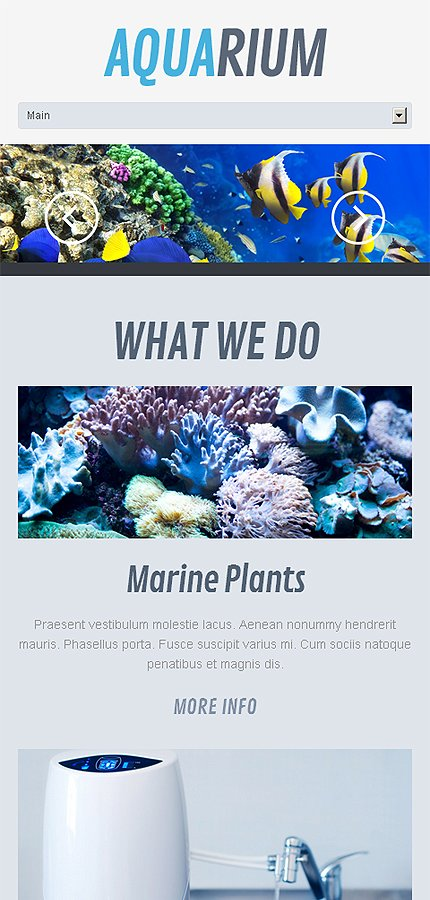Aquarium – Wonderful Responsive WordPress Aquarium Theme