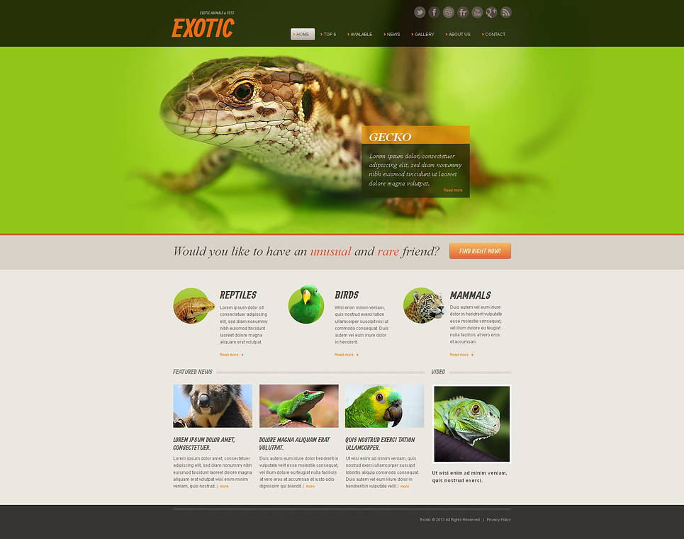 Exotic Pets Website Template with a jQuery Image Slider - image