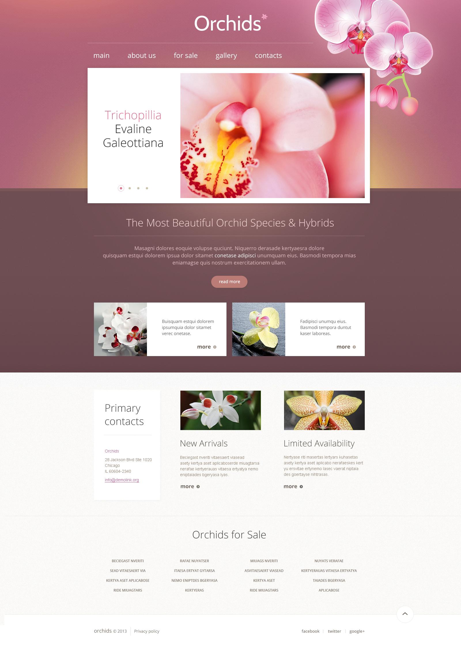 Modello siti web per un sito di fiori for Siti web di costruzione domestica
