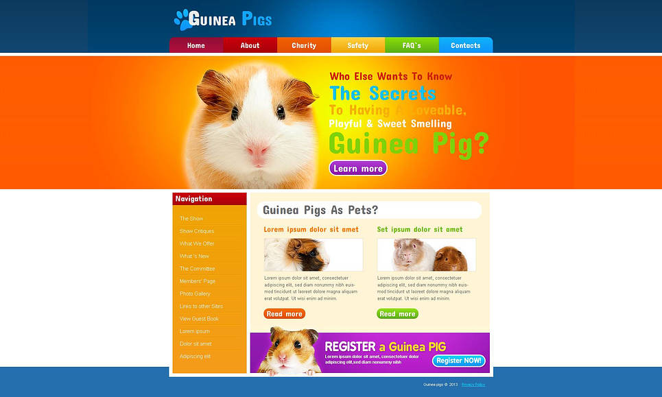 Guinea Pigs Website Template with Rainbow Colored Design - image