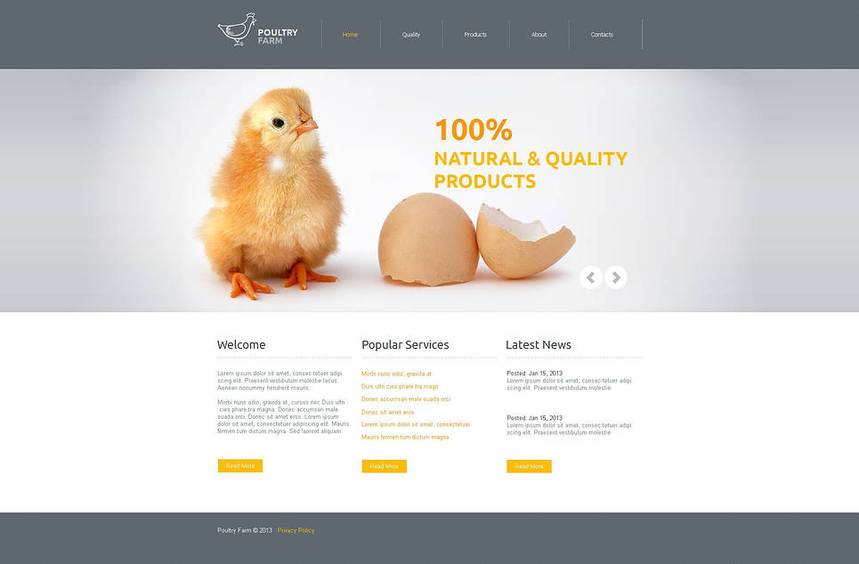 Poultry Farm Website Template with Gray Design - image