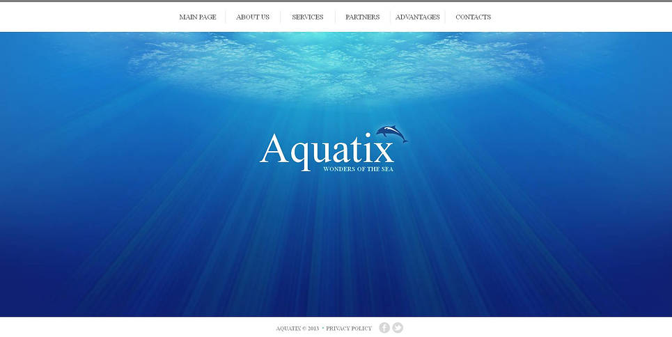 Dolphin Website Template with Background Image - image