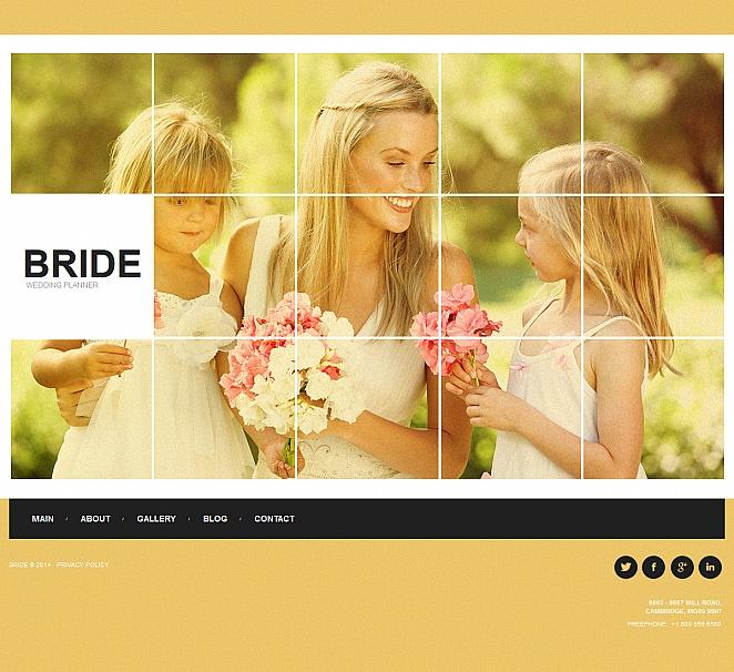 Alles über Hochzeiten auf einer Webseite - image