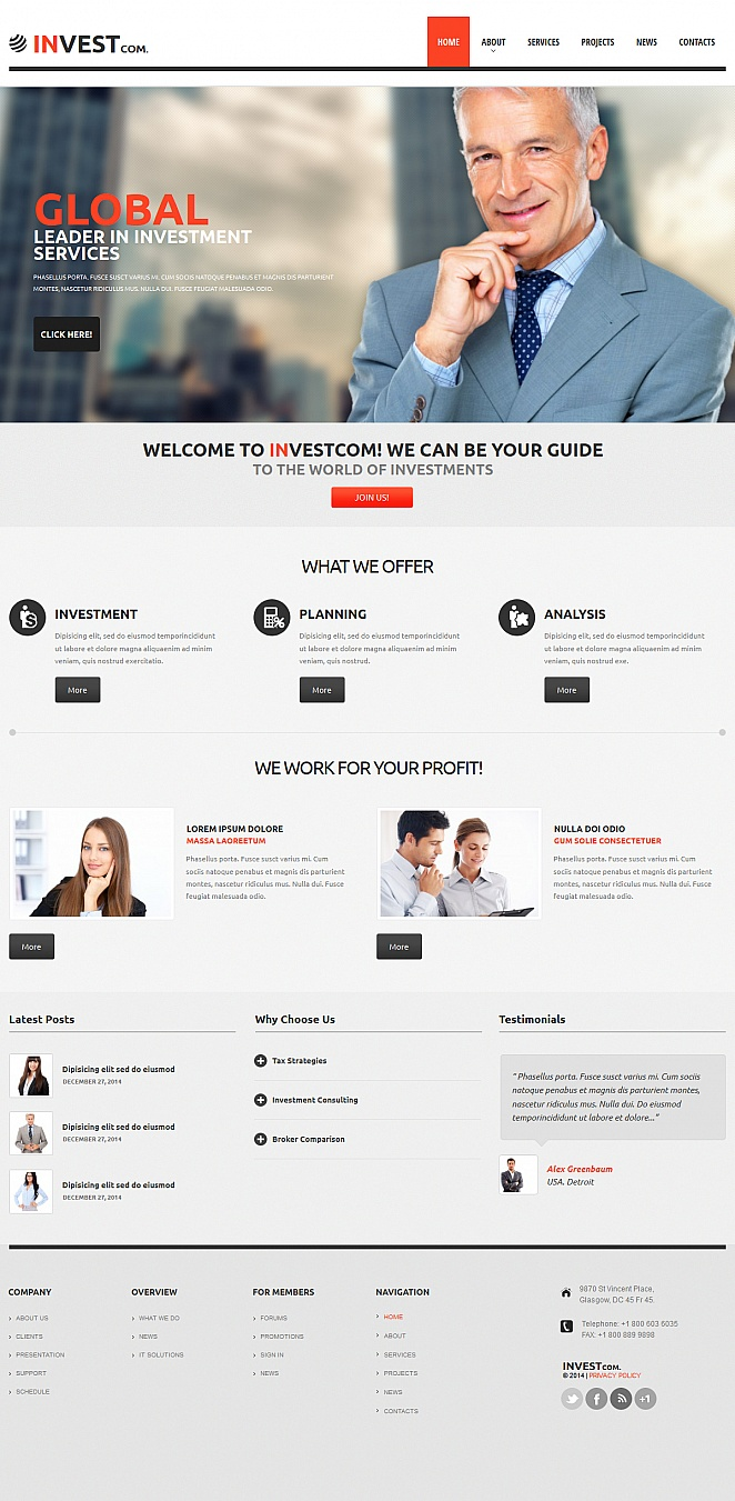 Business Investment Website Template in Minimalist Style - image