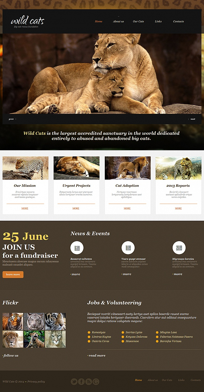 Wildlife and Nature Website Template with jQuery Slider - image