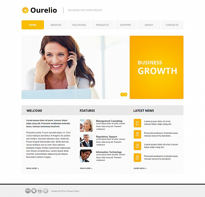 Business Website Template with Well-structured Layout - image