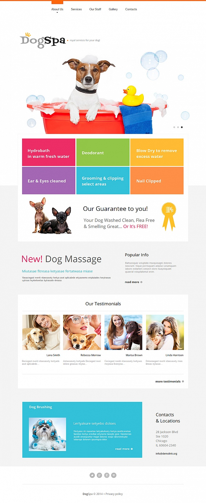 Dog Spa Website Template with Colorful Bricks - image